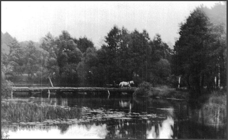 Старый мост через реку Снов. 19__ год.  Фото Ю.Горлова.