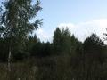 a_tkachenko00008