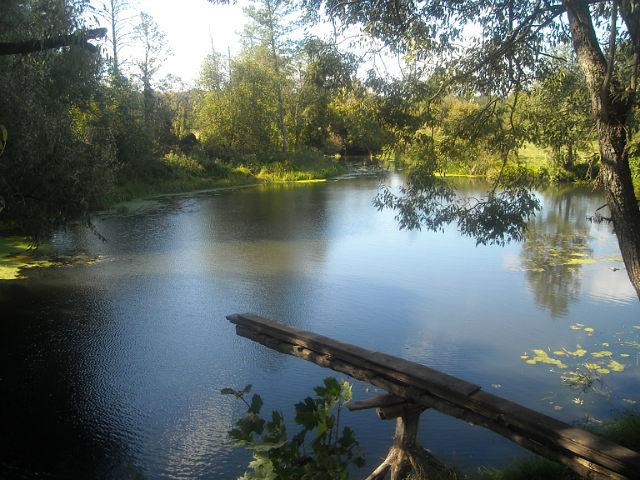 Речка Стратива возле мельницы в Медвёдовке. Фото Г.Тарнавского.