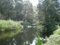 Река Снов. Фото О. Бондаренко