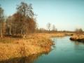 Река Снов. Фото С. Волошина
