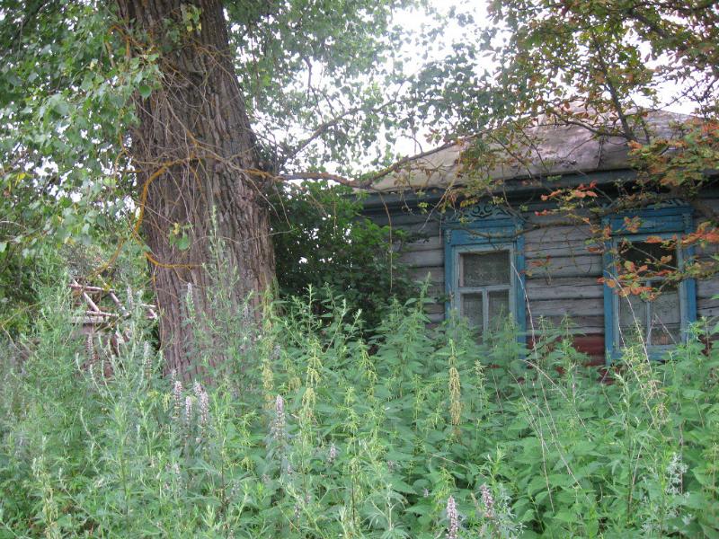 Посёлок Ульяновское. Фото О.Симоненко.