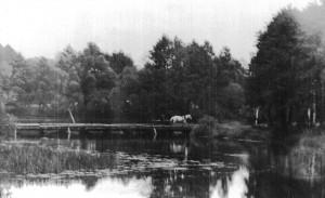Старый мост через р.Снов между селами Заречье и Тимоновичи (фото Ю.Горлова)