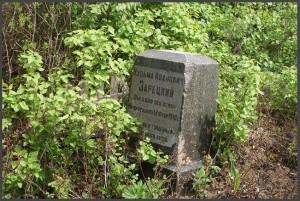 Памятник известному земляку. (фото Г.Тарнавского)
